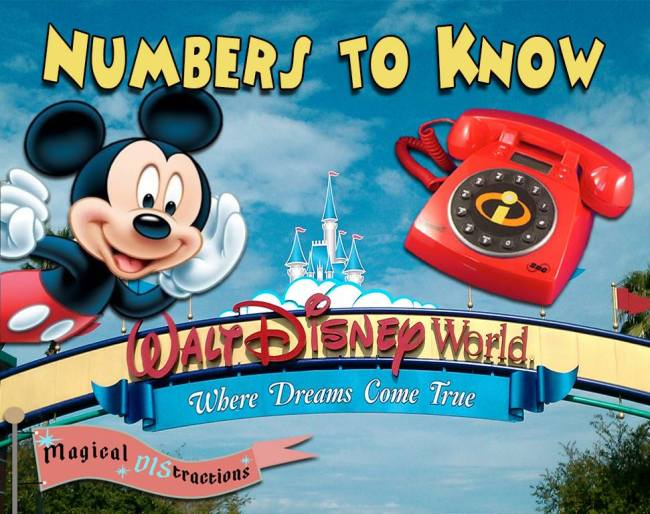 Wdw Phone Numbers Magical Distractions