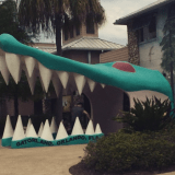 Vintage Florida; Gatorland and Weeki Wachee Springs