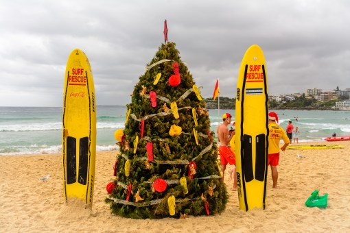 merry christmas from a soggy sydney! (photo by Matthew Fuentes)