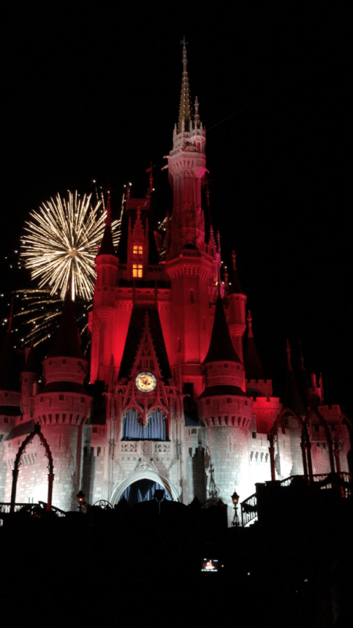 Fireworks at Disney World!