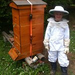 July 2015 – The Beekeepers Calendar
