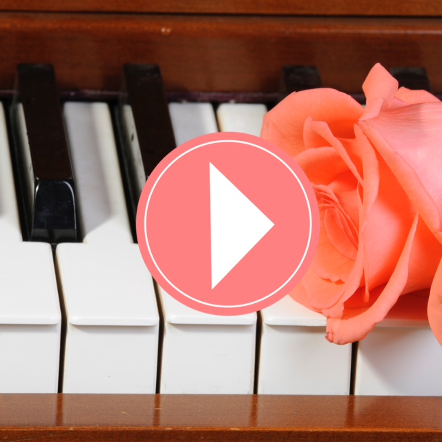 peach/pink colored Rose sitting on keys of piano