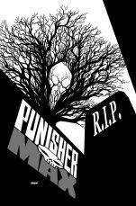 PunisherMAX_22_Cover