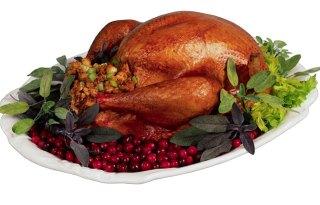 turkeyarticle