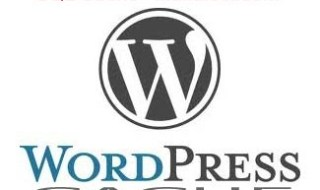 wordpress-cache