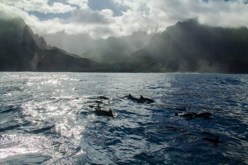 Na-Pali-Coast-Kauai-21