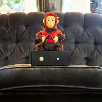Monkey Couch&nbsp;Guardian