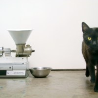 VCR Cat&nbsp;Feeder