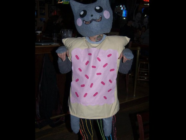 Nyan Cat Costume with EL Rainbow