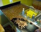 Install a PennyCountertop