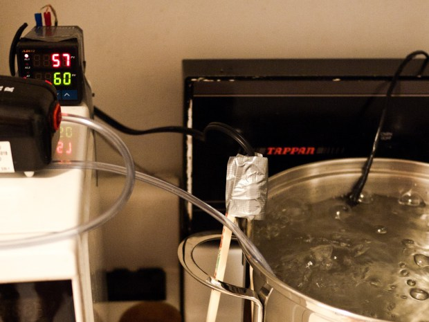 Sous Vide Immersion Heater for $50
