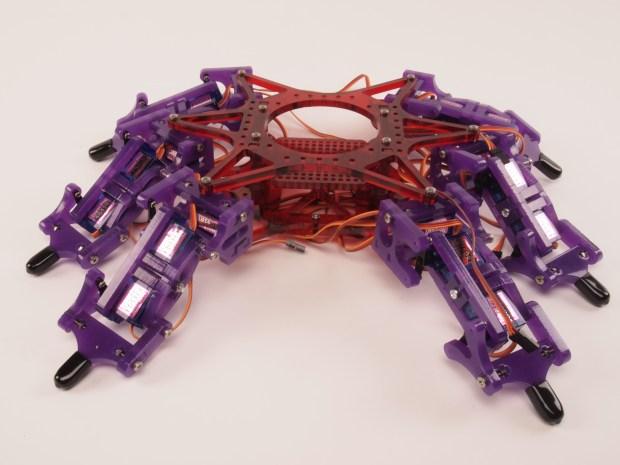 Hexy: Body Building