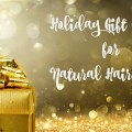 Holiday Gift Guide for Natural Hair Girls Main