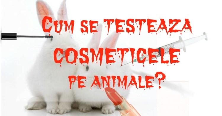cum-se-testeaza-cosmeticele-pe-animale