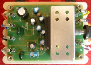 Ian used a cheap, generic 8-watt amplifier board to power his build.