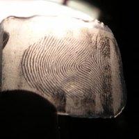Dummy fingerprint