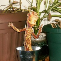 Baby Groot hanging out with his fellow plant buddies.