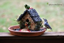 How-To: Gingerbread House Style Bird Feeder