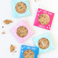 Grad Craft: DIY Smart Cookie Graduation Party Favors