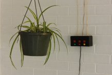 Build a Motorized System for Raising and Lowering Hanging Plants