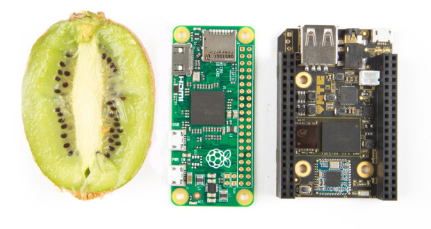 Kiwi for scale, with Pi Zero and C.H.I.P. Photography by Hep Svadja