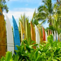 surfboard1