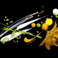 alinea-culinary-masterpiece