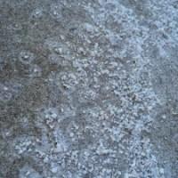 Salt from sand