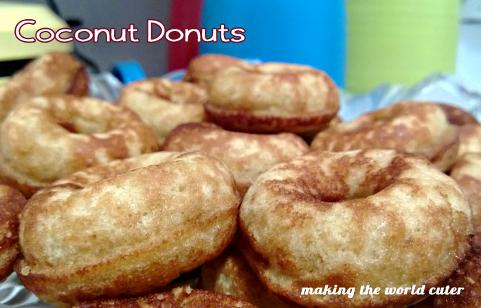 Paleo Fluffy Cake Doughnuts