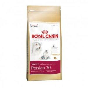royal_canin_persian