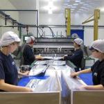 Baleares lidera el descenso en la producción industrial, con una caída del 10, 1%