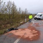 7 muertos y un herido muy grave en un accidente de tráfico en Pont de Molins
