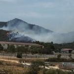 Los fuegos de Son Servera, Manacor y Petra fueron intencionados