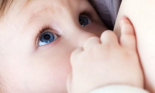 母乳 卒乳 進め方2