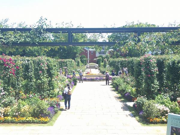 港の見える丘公園山下公園香りの庭