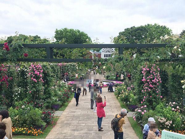 港の見える丘公園香りの庭