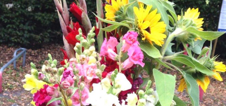 Himbeeren mit Würmchen und selbstgepflückte Blumen