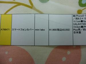 P1040560