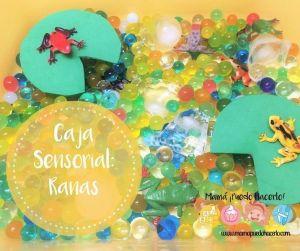 Caja Sensorial de Ranas – Juego imaginativo