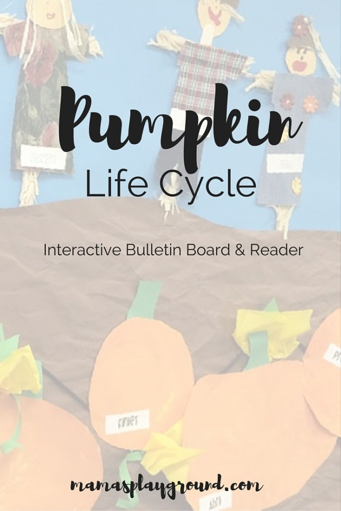 Pumpkin Life Cycle Bulletin Board