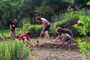 Vom Garten lernen: Unterricht im Freien