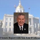 NH Senate sig