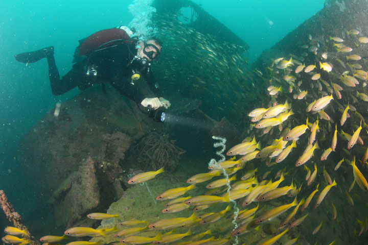 wreck diving in subic bay