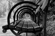 cp-bench-black-and-white