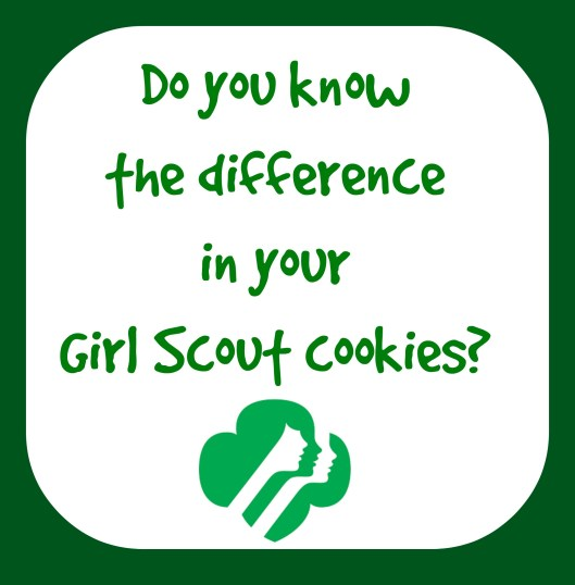 girlscoutdifferencepost
