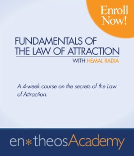 Fundamentals of the Law of Attraction - Hemal Radia