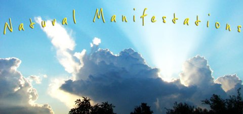 Want to Have Manifestations Happen More Easily in Your Life?