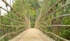 Hanging Bridge - Kemmanu Manipal