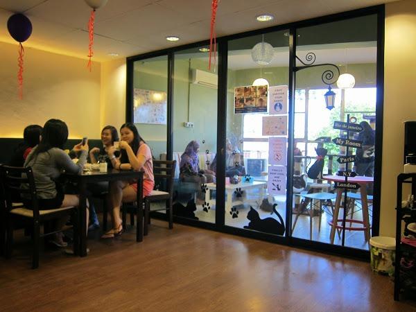 Meow Meow Cat Cafe Kuching Sarawak Malaysia