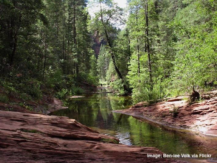 Nature in Sedona Arizona